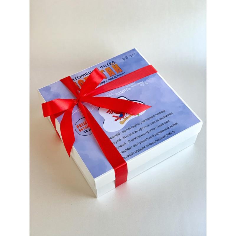 Подарочный набор «Попугай» (Питомец из фетра)