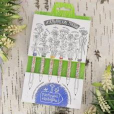 """Растущие карандаши """"Итальянские травы""""(6 штук)"""