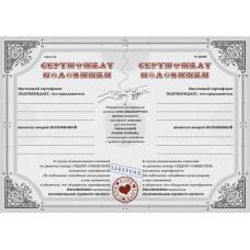 "Сертификат ""Две половинки"""